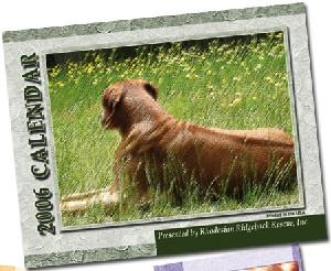 2006 Ridgeback-a-Day Calendar